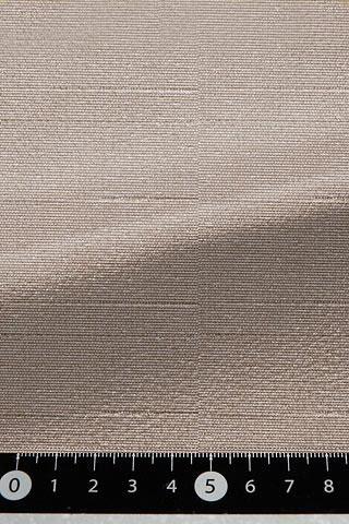 表素材L-8252