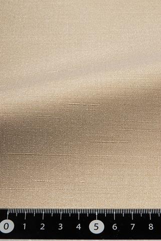 表素材L-8258